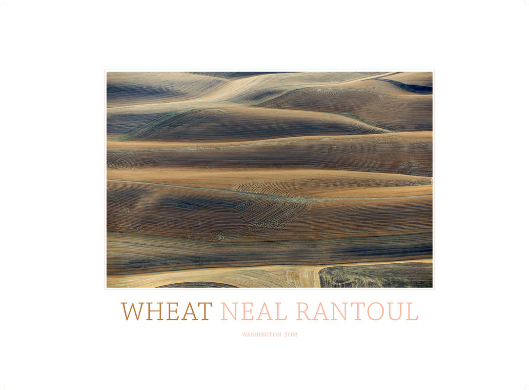 Wheat brown rtp this is the one